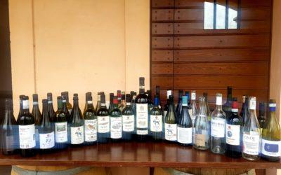Il Vino è convivialità.