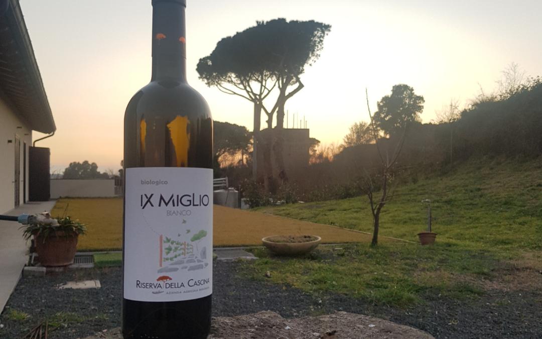 Riserva della Cascina: la Storia e il Vino si incontrano sulle tracce dell'Appia Antica